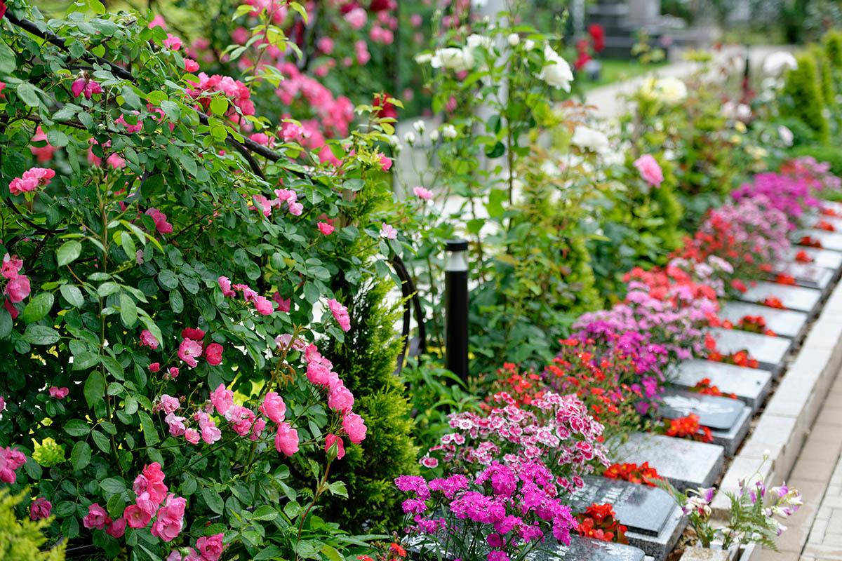 色彩豊かなの花に囲まれた墓所