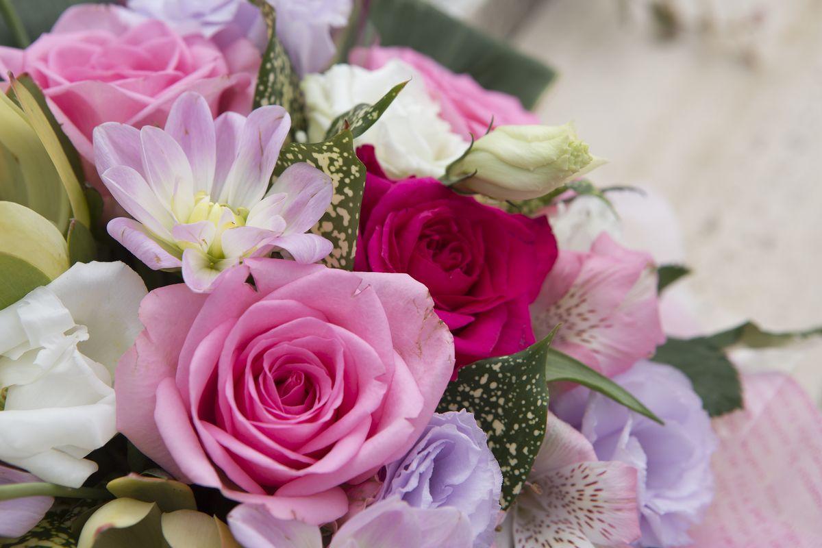 バラをシンボルに、四季折々の花に彩られた樹木葬エリア