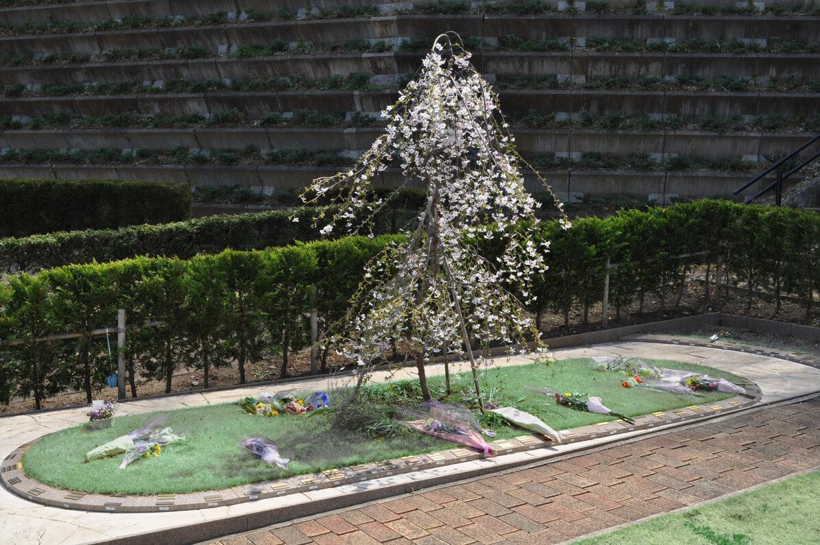 桜乃樹木葬